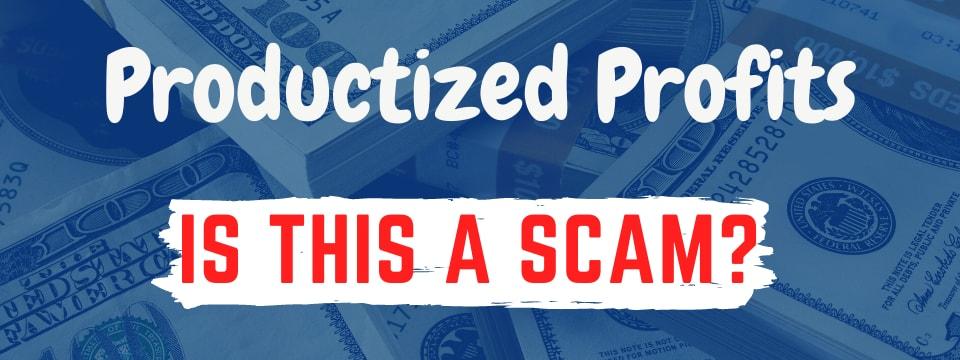 productized profits review